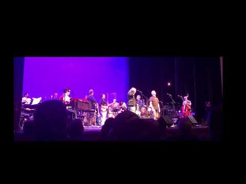 "Wild Honey Orchestra (w/Ian Matthews) - ""Broken Arrow"" - February 17, 2018"