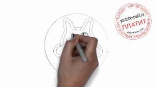 Нарисованные коты  Как нарисовать морду кошки карандашом