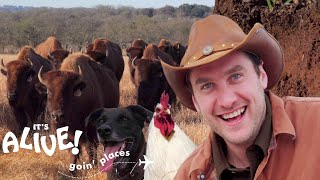 brad-goes-ranching-in-texas-it-s-alive-goin-places-bon-apptit
