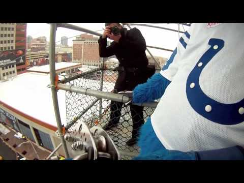 Colts Mascot BLUE Ziping at Superbowl