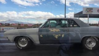 ROADKILL ZIP-TIE DRAGS || With Freiburger and Lucky!