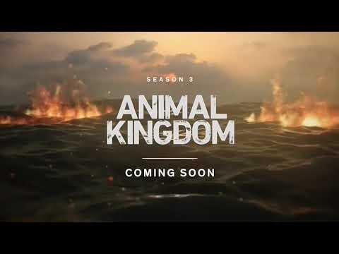 ANIMAL KINGDOM SEASON 3 - TEASER PROMO