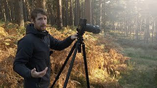 Landscape Photography in the Woods w/ Fujifilm GFX