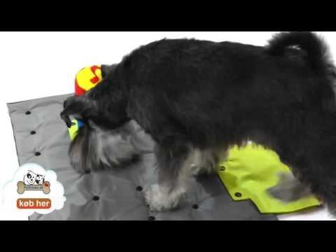 BUSTER ACTIVITYMAT - Stimulerer hunden
