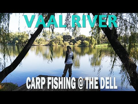 Carp Fishing At The Vaal River, South Africa (May 2019) - The Dell