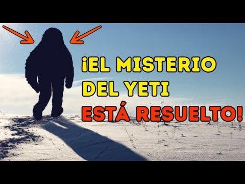 Científicos por fin resolvieron el misterio del Yeti