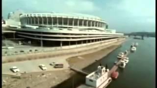 1981 Bengals