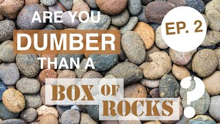 Are You Dumber Than a Box of Rocks? Game Show - Episode 2