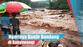 Download Video Ngerinya Banjir Bandang di Banyuwangi MP3 3GP MP4