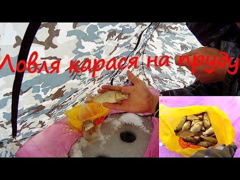 толстолобик весной видео
