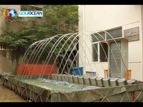 Jumping Jet Factory Test Video - by Suzhou Gold Ocean Co., Ltd
