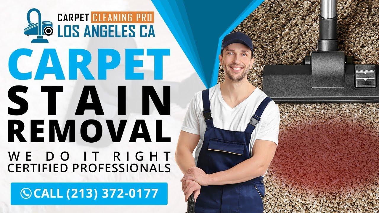 Carpet Cleaners In Glendale Ca Carpet Vidalondon