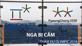 Nga bị cấm tham dự Olympic 2018   VTC1