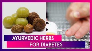World Diabetes Day 2019: Ayurvedic Herbs To Lower Blood Sugar Levels Naturally! screenshot 2