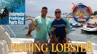 100X35PR FISHING FT UNDERWAGTER PR (FISHING LOBSTER)