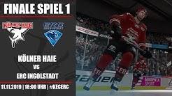 Kölner Haie - ERC Ingolstadt [Playoffs: Finale] | NHL 20 DEL Saison #061