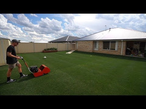 "Taking My Lawn From 18mm-12mm (1/2"") // Reel Low Perennial Ryegrass"
