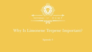 Why Limonene Terpene in hemp is so important!