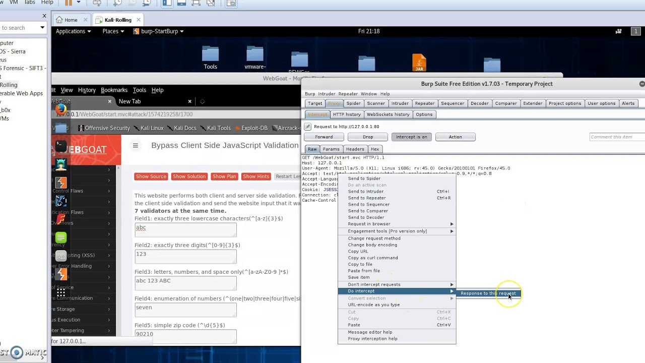 OWASP WebGoat - Javascript validation Bypass