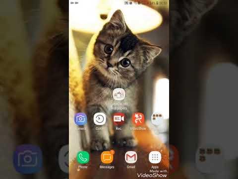 Cute Chibi Cat Wallpapers Hd