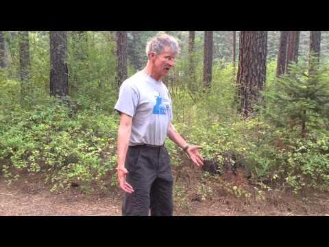 hqdefault - Sciatica When I Stand