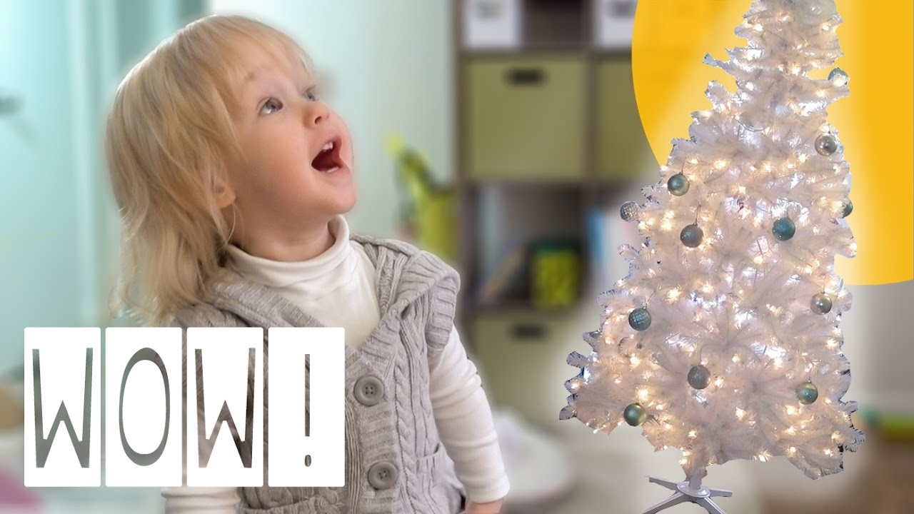 toddler amazed by christmas tree thepfledpfam
