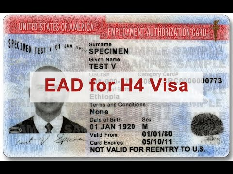 USA VISA Dairy-H4 EAD BAN BY Trump Administration