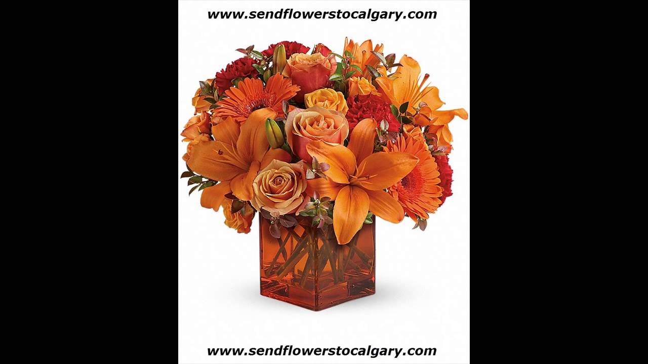 Canada Flowers Same Day Delivery Youtube
