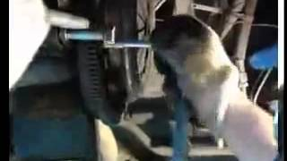 Замена сцепления на ВАЗ 2110