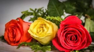 Все  цветы - Николай БАСКОВ / Видеопоздравление ...