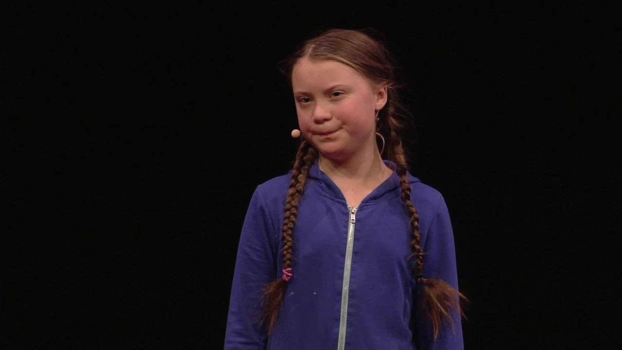 Greta Thunberg on America: Too Much Air Conditioning, Not Enough Science