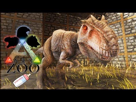 ARK ZOO - 30 : Le voici notre bébé Giganotosaurus !