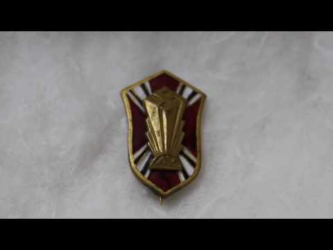 German AMERICAN Bund Pin