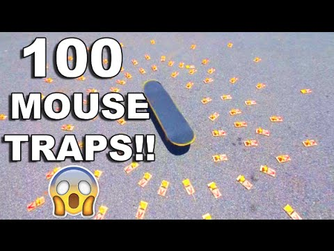 skating-over-mouse-traps!