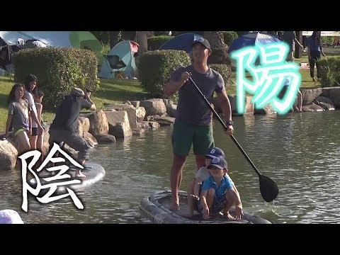 ドブ池で水面に浮かぶSUPハゲ【allo news #1-5】
