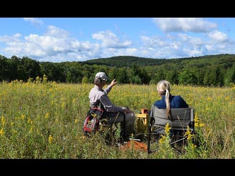 Finding Wild Honey Bees