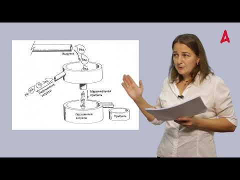 Как читать финансовую отчетность предприятия: проморолик