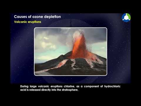 Causes of Ozone Depletion