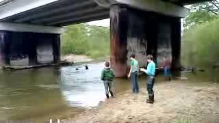 видео: Рыбалка под мостом через реку Нарва