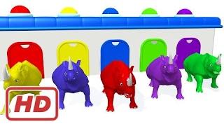 Цвета животных для детей | Обучение цветов с носорог | Цвета, обучение видео для детей