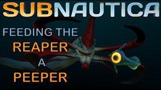 Feeding The Reaper a Peeper | SUBNAUTICA |