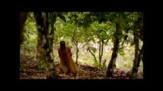 Правда о шоколаде (документальный фильм, Дания, 2010)