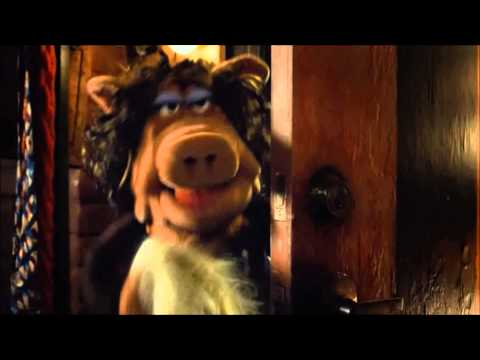 The Muppets - Miss Poogey