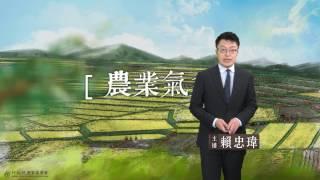 農業氣象預告1060424
