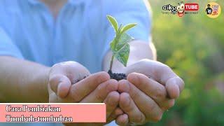 Sains Tahun 3: Cara Pembiakan Tumbuh tumbuhan