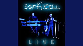 Mr Self Destruct (Live 2003)
