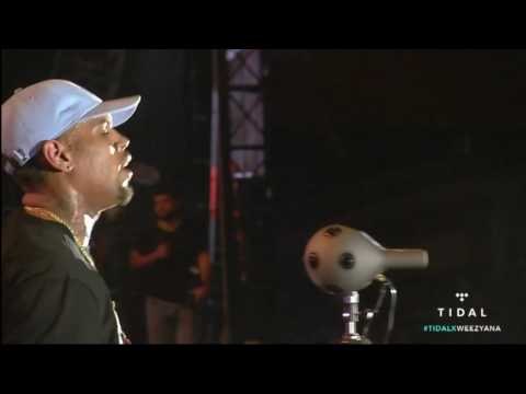 Chris Brown performance (Lil' Weezyana Festival 2016)