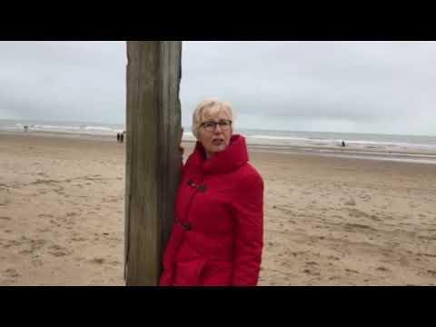 Groen, Water & Land op het strand van Egmond