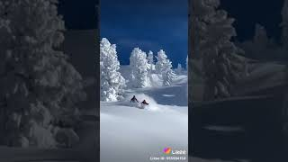 Сказочно красиво #сказка #природа #красота #снег #лыжи