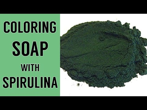 Spirulina in Hot Process Soap